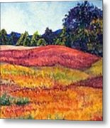 Wisconsin Summer Metal Print