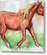 Horse Painted In Watercolor Wisdom Metal Print