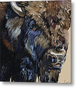 Wise Plains Drifter Metal Print
