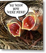 Wish You Were Here Greeting Card Metal Print