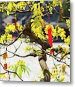 Wishing Tree At The Tomb Of Emperor Metal Print