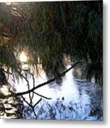 Wishkah River Metal Print
