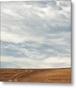 Wispy Clouds Metal Print by Latah Trail Foundation