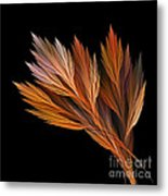Wispy Tones Of Autumn Metal Print