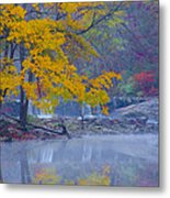Wissahickon Morning In Autumn Metal Print
