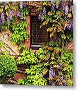 Wisteria On A Home In Zellenberg France 3 Metal Print