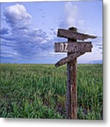 Witch Way To Oz Metal Print