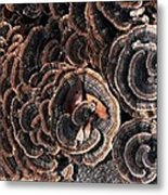 With Love - Grounded Metal Print by Theresa  Asher