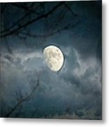 Within Her Misty Veil Metal Print