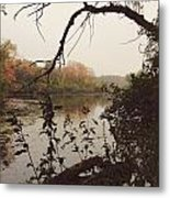 Within Nature Metal Print