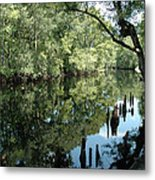 Withlacoochee River Reflections Metal Print