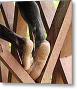 Without Title Metal Print