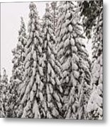 Wnter Snow At Shaver Lake Metal Print