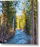 Wolf Creek Flowing Downstream  Metal Print