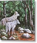 Wolves In South Dakota Metal Print