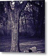 Woman Under A Tree Metal Print