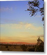 Wonder Valley Metal Print
