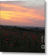 Wonderful Poppy Fields Galicia. Metal Print by  Andrzej Goszcz