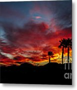 Wonderful  Sunrise Metal Print