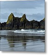Wonders Of The Ocean Metal Print