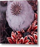 Wonderworld Of Flowers Metal Print