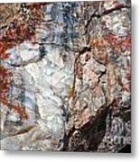 Wood From Another Era Metal Print