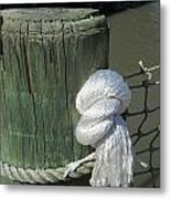 Wood Post Metal Print