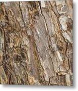 Wood Textures 4 Metal Print