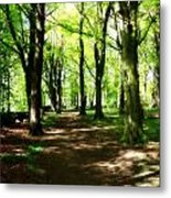 Wooded Path Metal Print