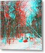 Wooded Path - Use Red And Cyan Filtered 3d Glasses Metal Print