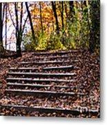 Wooded Stairs Metal Print