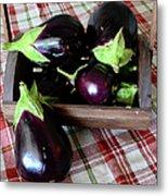 Wooden Basket Of Eggplant Metal Print