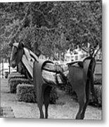 Wooden Horse6 Metal Print