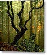Woodland Burial Metal Print