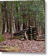 Woodland Cabin Ruins Metal Print