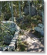 Woodland Path With Stone Wall Metal Print