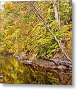 Woodland Stream Early Autumn Montgomery County Pennsylvania Metal Print