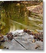 Woodland Water Metal Print