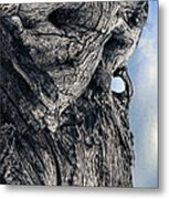 Woodman Metal Print by Petros Yiannakas