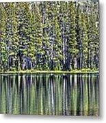 Woods Lake 4 Metal Print