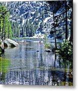 Woods Lake Metal Print