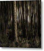 Woods Metal Print by Mario Celzner