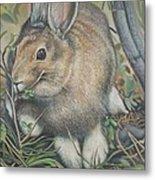 Woods Rabbit Metal Print