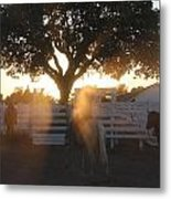 Working The Ranch Metal Print