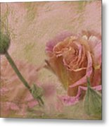 World Peace Roses With Texture Metal Print