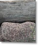 Worm Wood And Granite Metal Print