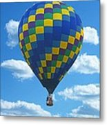 Would You Like To Fly Metal Print