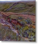 Wounded Earth Metal Print