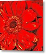 Wow Red Metal Print