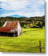 Wow - The Grass Is Greener On The Other Side Metal Print